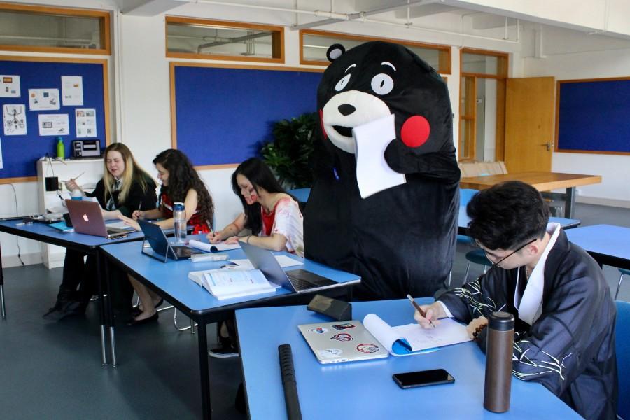 1 Bear in Class